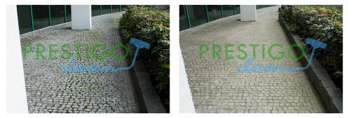 kostka-granitowa-brudna-porośnięta-mchem-zielonym-doczyszczanie-czyszczenie-mycie-usuwanie-Wrocław