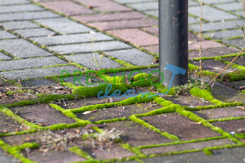 mech-trawa-zieleń-usuwanie-czyszczenie-mycie-z-kostki-Wrocław