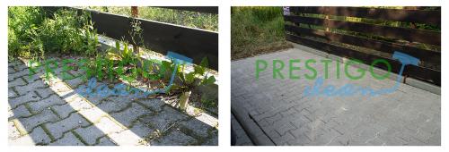 trawa-mech-szybkie-usuwanie-z-kostki-brukowej-czyszczenie-doczyszczanie-usuwanie-mycie-Wrocław